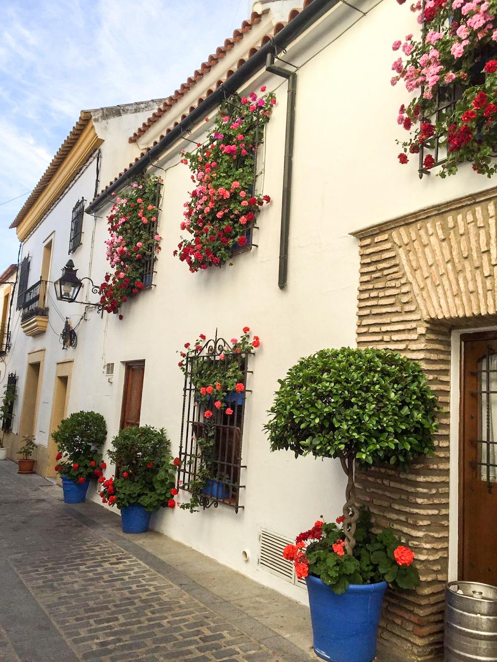12 - festival in córdoba - romantische streken - straatje - bloemen