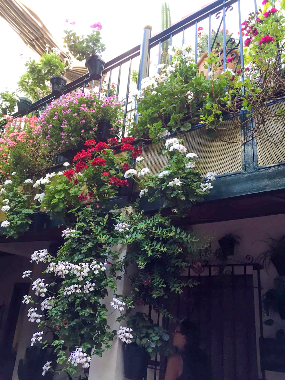 13 - festival in córdoba - romantische streken - straatje - bloemen