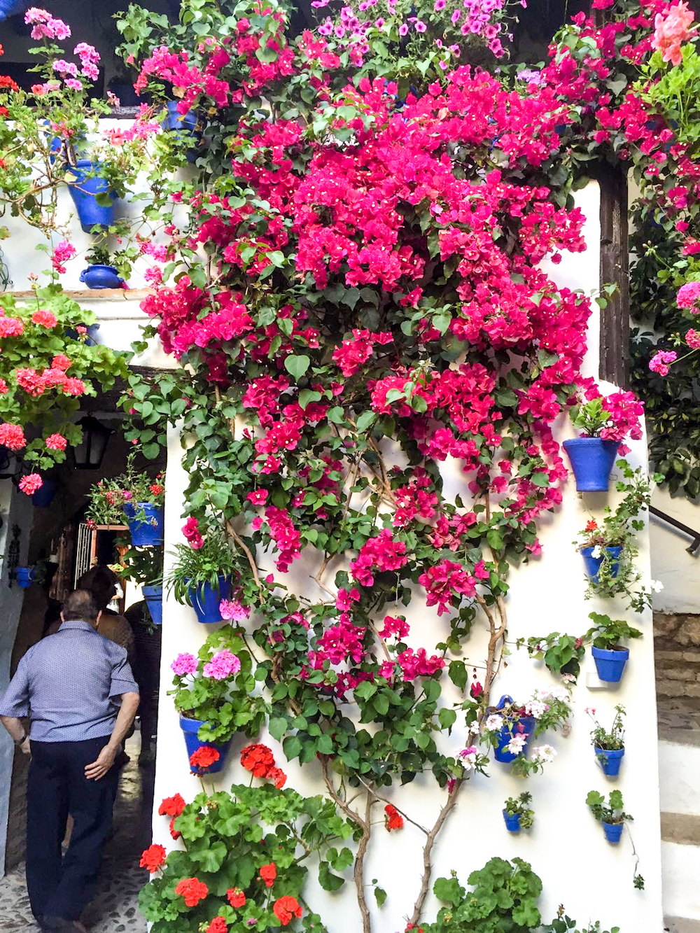 14 - festival in córdoba - romantische streken - straatje - bloemen