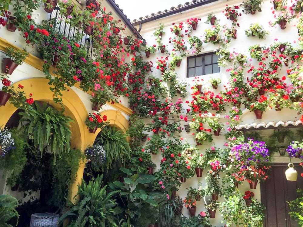 2 - festival in córdoba - romantische streken - straatje - bloemen