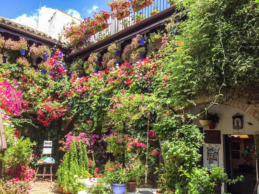 6 - festival in córdoba - romantische streken - straatje - bloemen