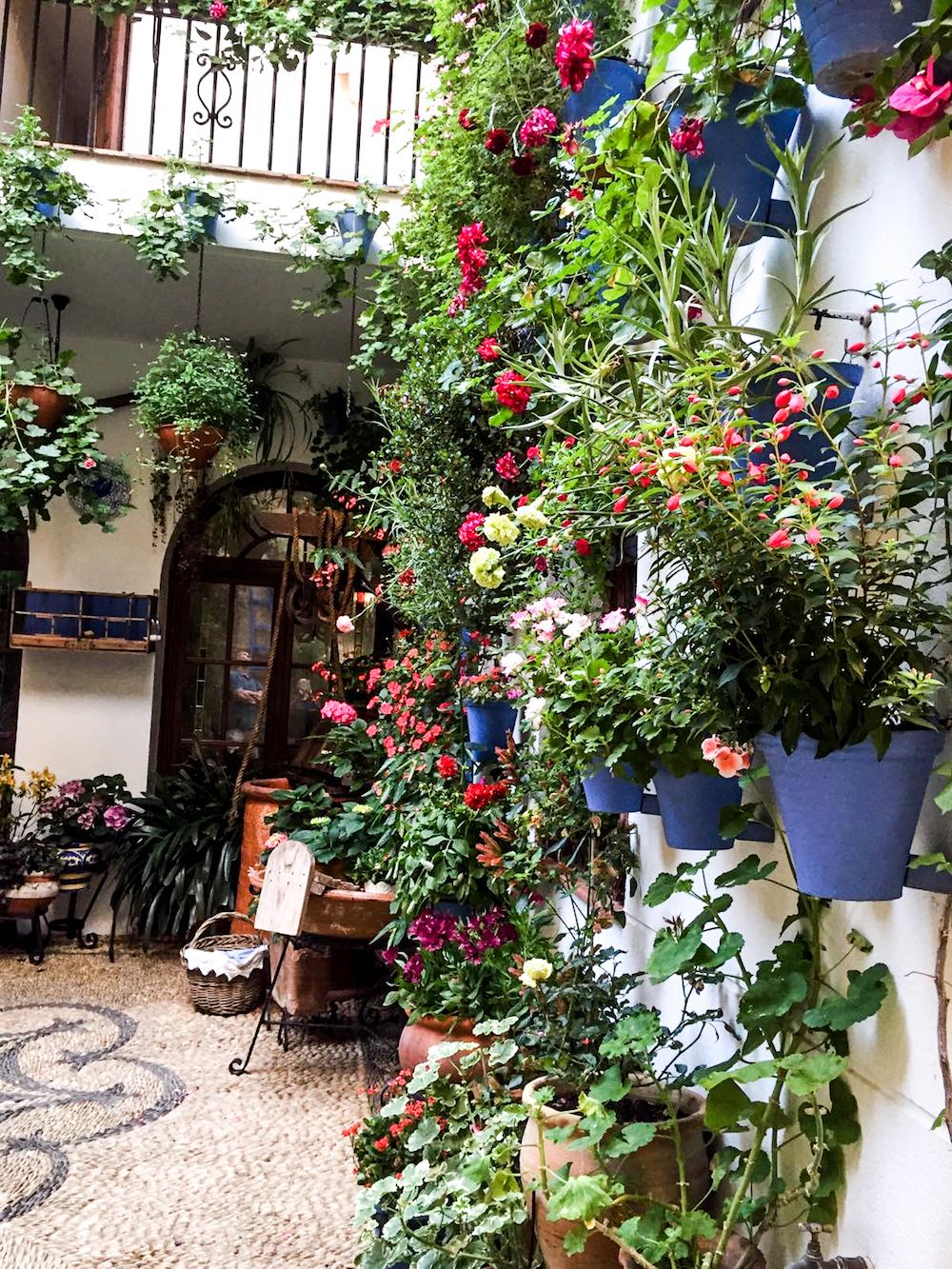 8 - festival in córdoba - romantische streken - straatje - bloemen