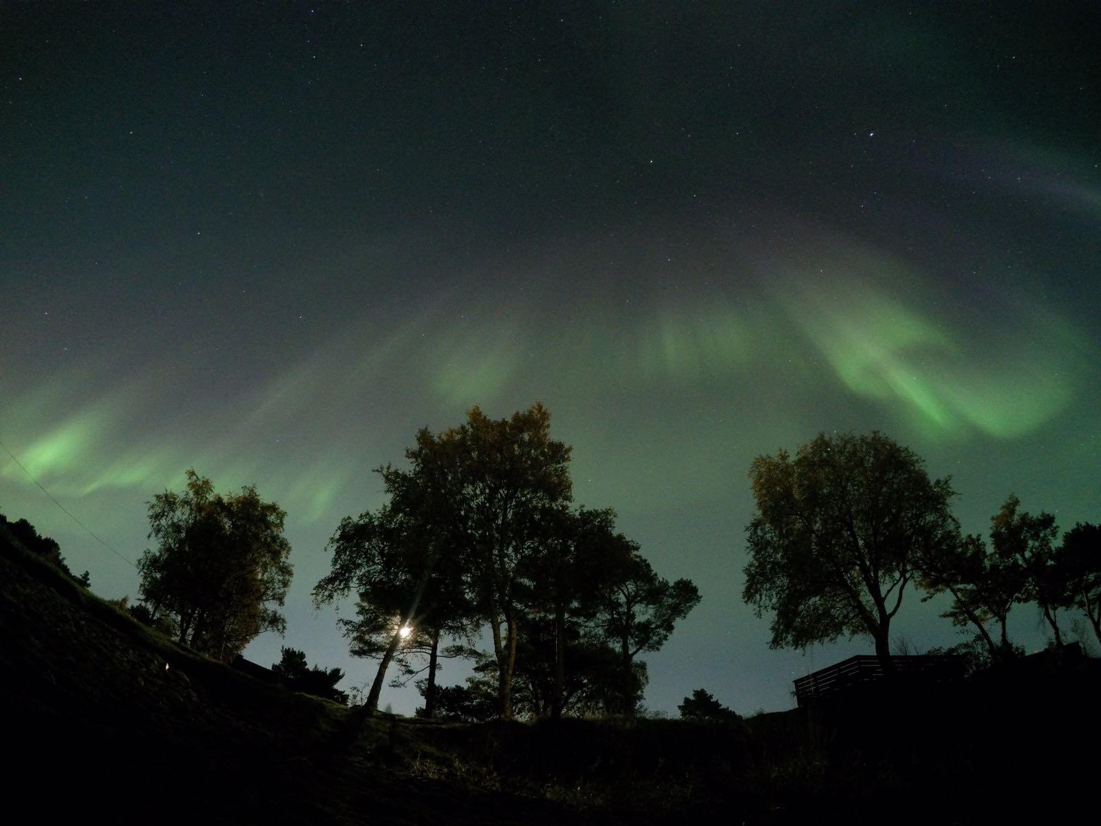 noorderlicht noorwegen foto daphne
